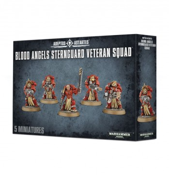 Blood Angels: Sternguard Veteran Squad
